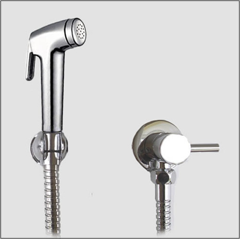 KIT1299: Pre-set Warm Water Bidet Shower